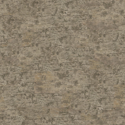 Wood Seamless Texture #1244