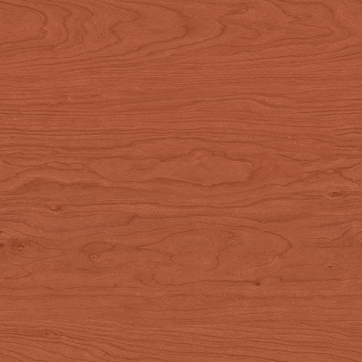 Wood Seamless Texture #1239