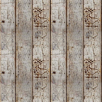 Old Wooden Plank Seamless Texture #798