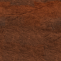 Leather Seamless Texture #3803