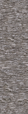 Tree Bark Seamless Texture #6793