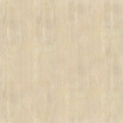 Smooth wood seamless Texture #859
