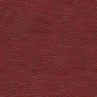 Leather Seamless Texture #3842