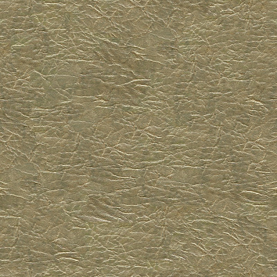 Leather Seamless Texture #3868
