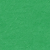 Leather Seamless Texture #3805