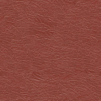 Leather Seamless Texture #3838