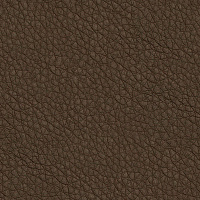 Leather Seamless Texture #3807