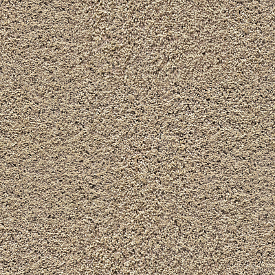 Carpet Seamless Texture #6638