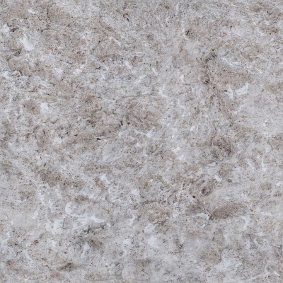 Snow Seamless Texture #6758