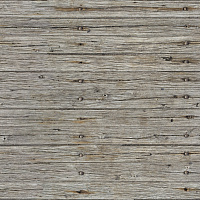Old Wooden Plank Seamless Texture #486